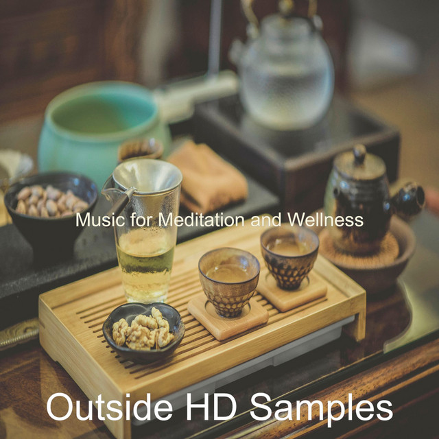 Album cover for Music for Meditation and Wellness by Outside HD Samples