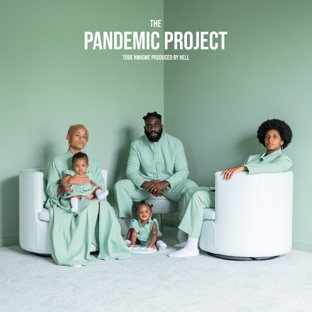 THE PANDEMIC PROJECT