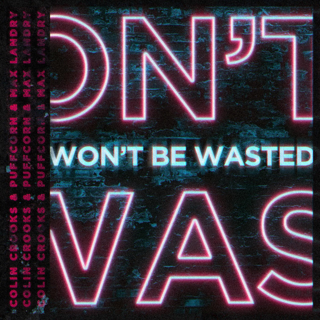 Won't Be Wasted (feat. Max Landry)  Image