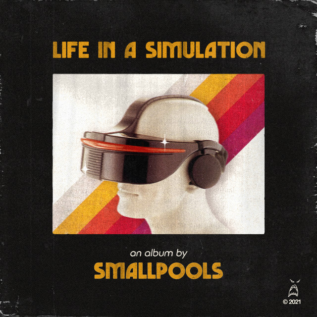 LIFE IN A SIMULATION