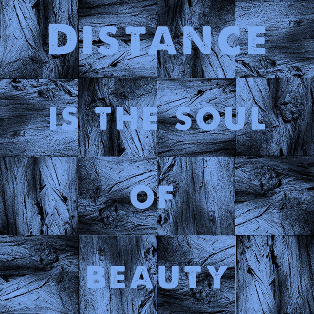 Michael J Sheehy  Distance Is The Soul Of Beauty :Replay