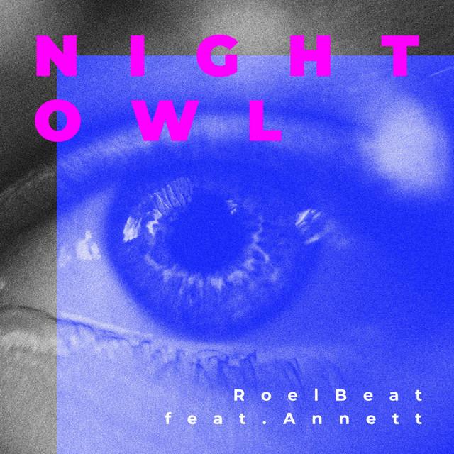 Night Owl Image