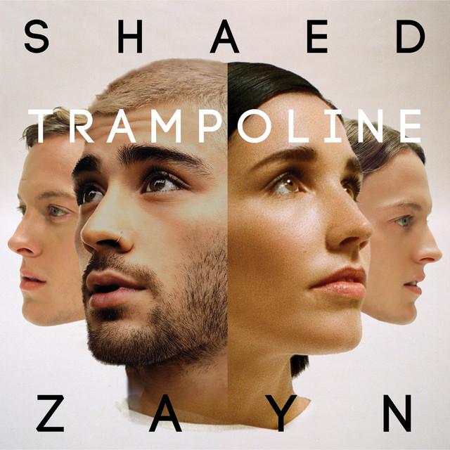 SHAED, ZAYN - Trampoline