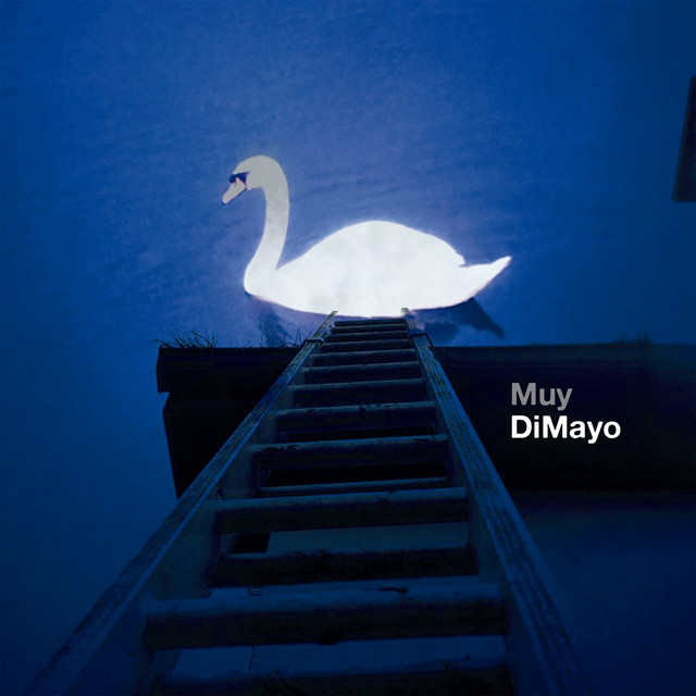 DiMayo