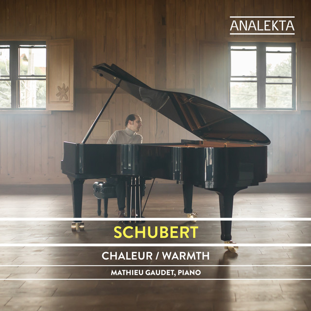Schubert: The Complete Sonatas and Major Piano Works, Vol. 5 – Warmth