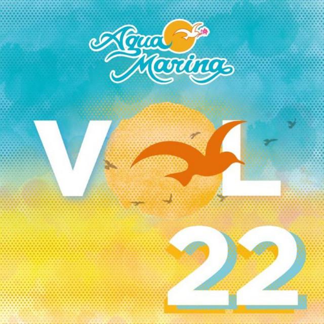 Vol. 22 - Cómo Haré para Olvidarte