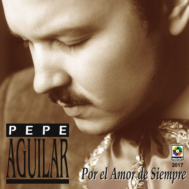 Artwork for Me Estoy Acostumbrando A Ti by Pepe Aguilar