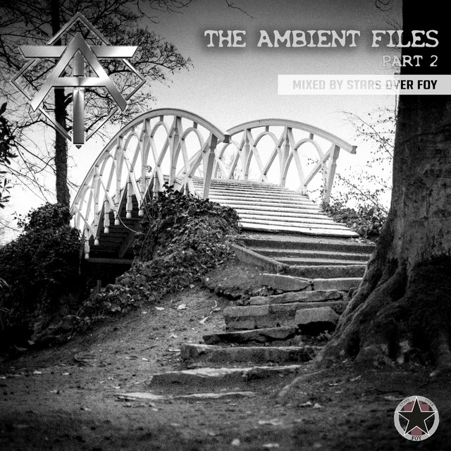 The Ambient Files, Pt. 2 (Mixed by Stars Over Foy)