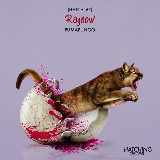 Pumagungo Image