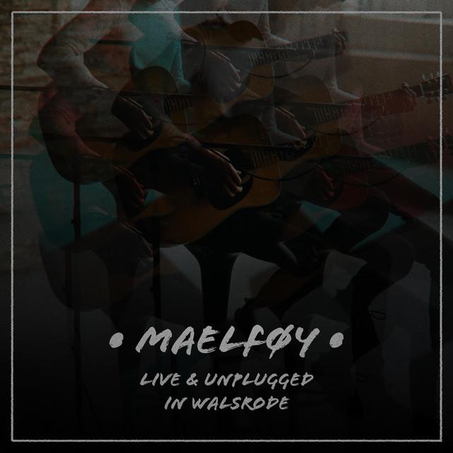 singles walsrode