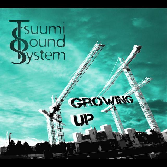 Tsuumi Sound System