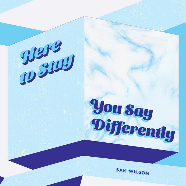 Sam Wilson - Here to Stay / You Say Differently