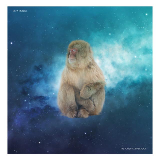 Meta Monkey
