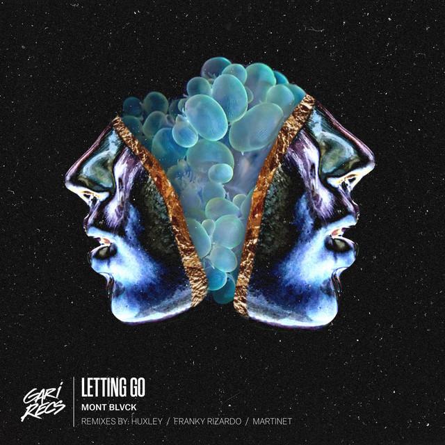 Letting Go - Franky Rizardo Remix