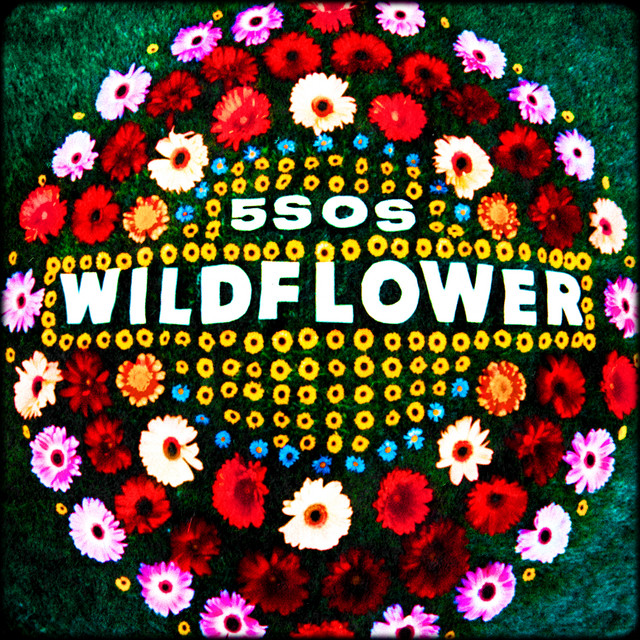 5 Seconds of Summer - Wildflower