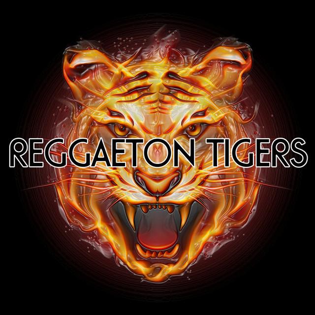 Reggaeton Tigers