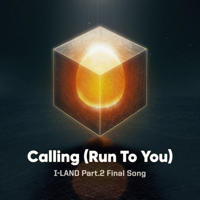 Calling (Run To You) cover