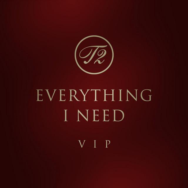 Everything I Need (Vip MIX)