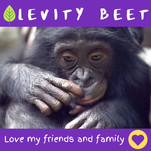 Love My Friends and Family by Levity Beet