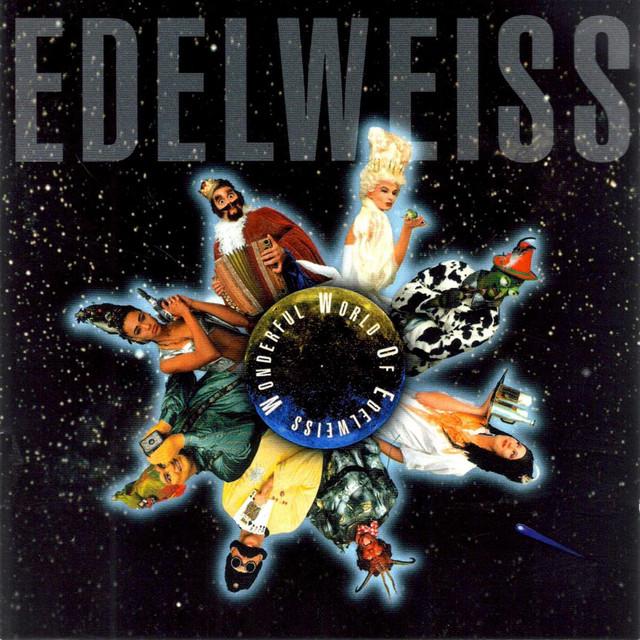 Starship (Raumschiff) Edelweiss