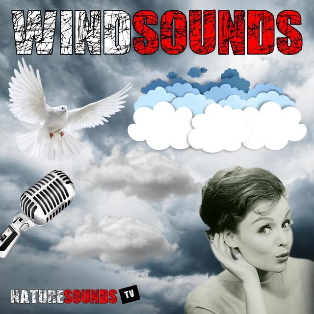 Nature Sounds TV