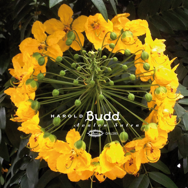 Harold Budd