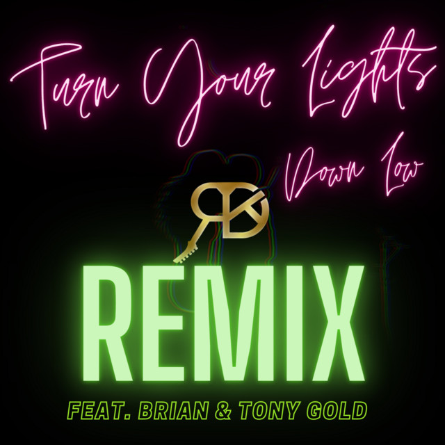 Turn Your Lights Down Low Remix album cover