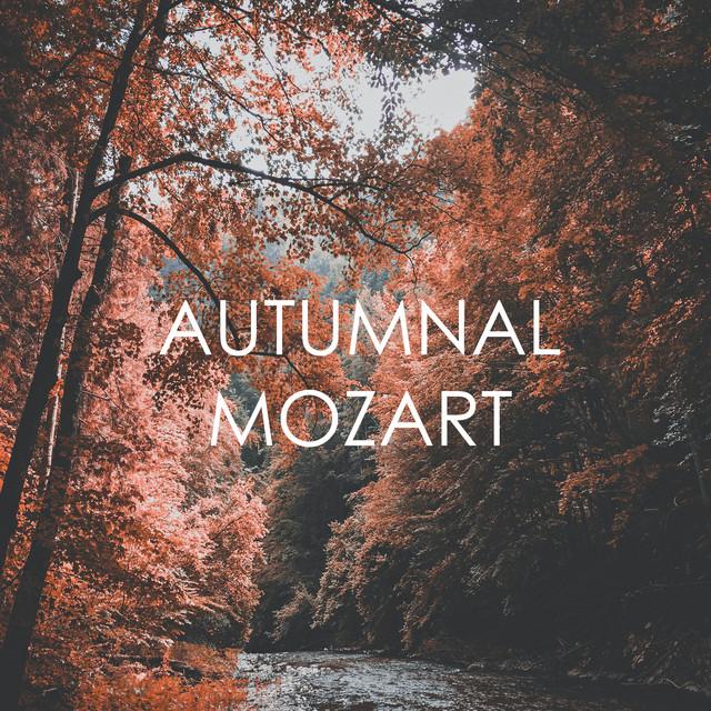 Piano Concerto No. 20 in D Minor: M album cover