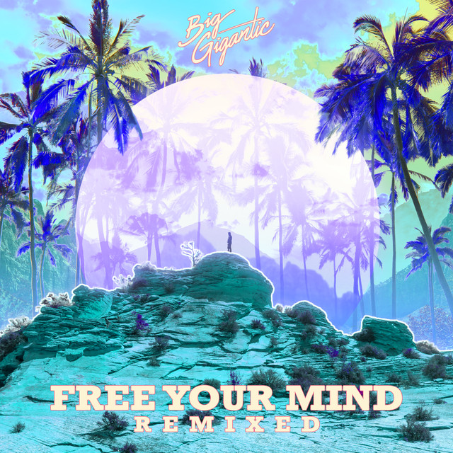 Album cover for Free Your Mind Remixed by Big Gigantic