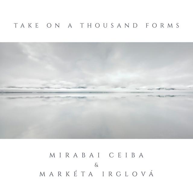 Take On A Thousand Forms