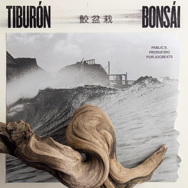 Tiburón / Bonsái Image