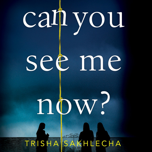 Can You See Me Now? (Unabridged)