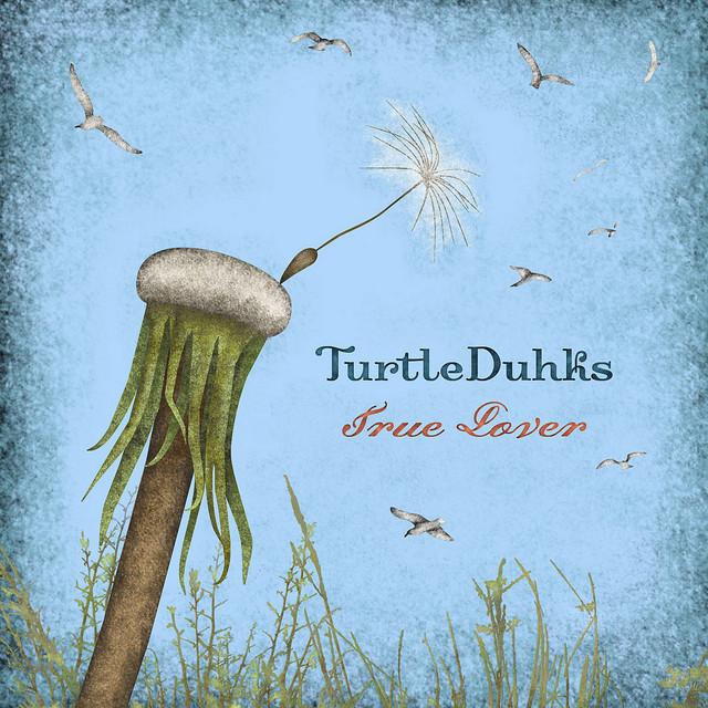 The TurtleDuhks