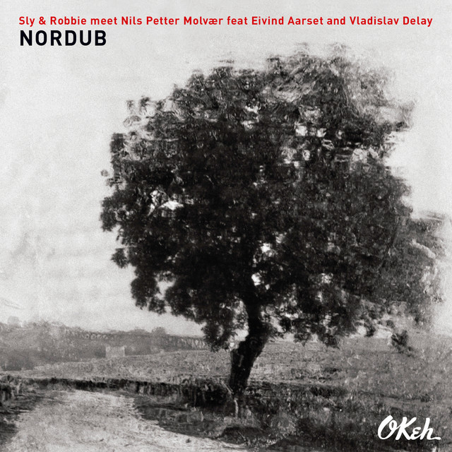 Nordub (feat. Eivind Aarset & Vladislav Delay)