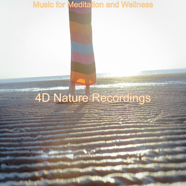 Music for Meditation and Wellness