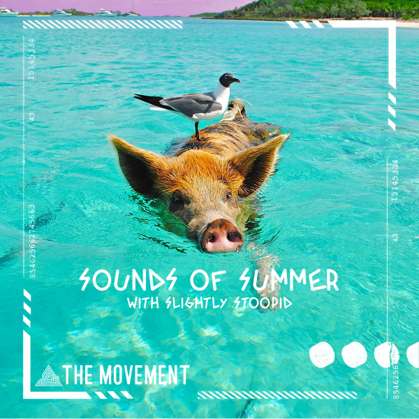 Sounds Of Summer album cover