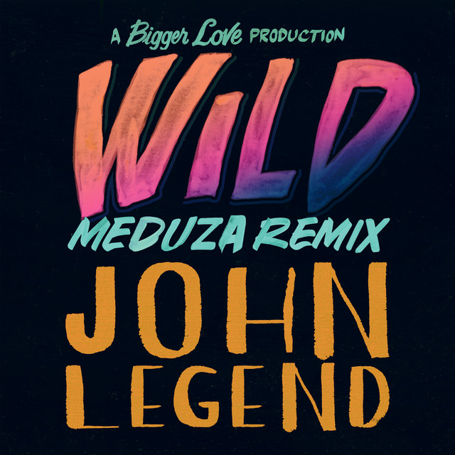 Wild (Meduza Remix) album cover