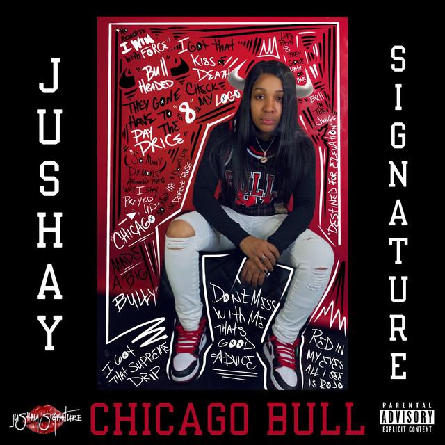 Chicago Bull