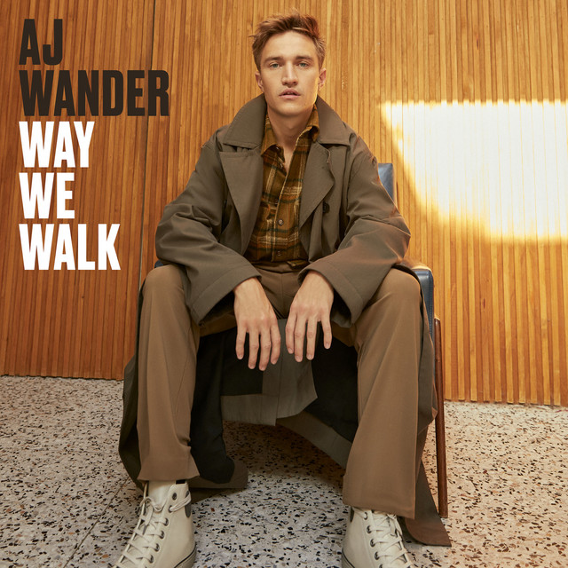 Way We Walk
