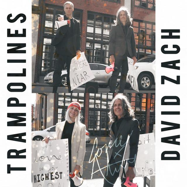 Trampolines, David Zach - Come Alive