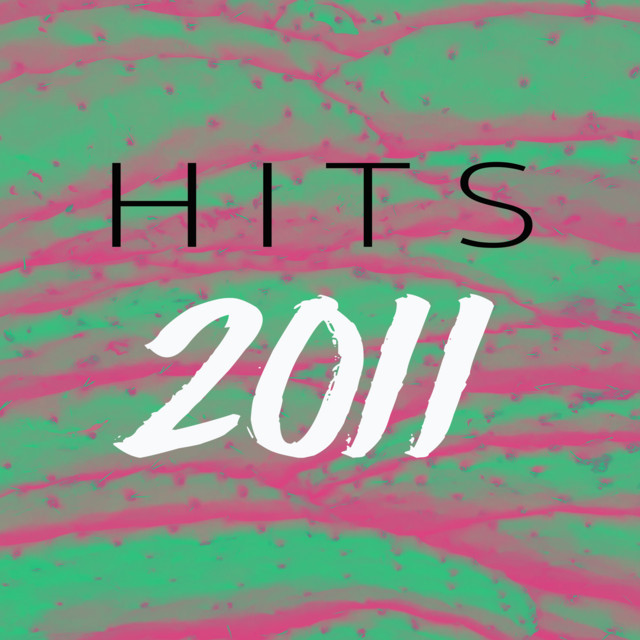 2011 Hits