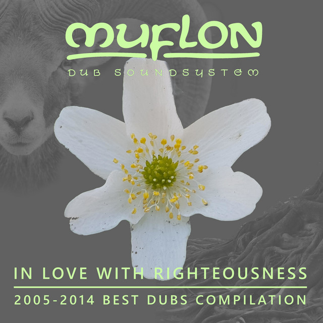 In Love with Righteousness (2005-2014 Best Dubs Compilation)