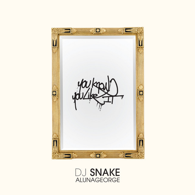 DJ Snake You Know You Like It acapella