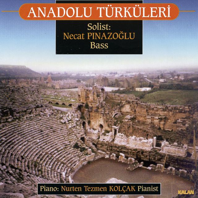 Anadolu Türküleri