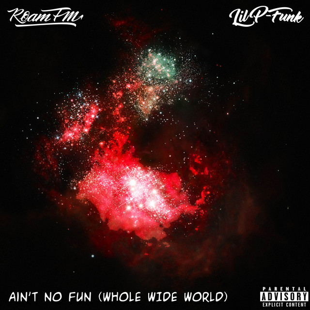Ain't No Fun (Whole Wide World) Image