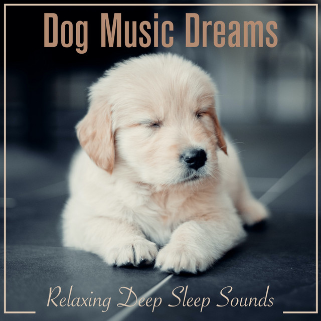 Dog Music Dreams: Relaxing Deep Sleep Sounds
