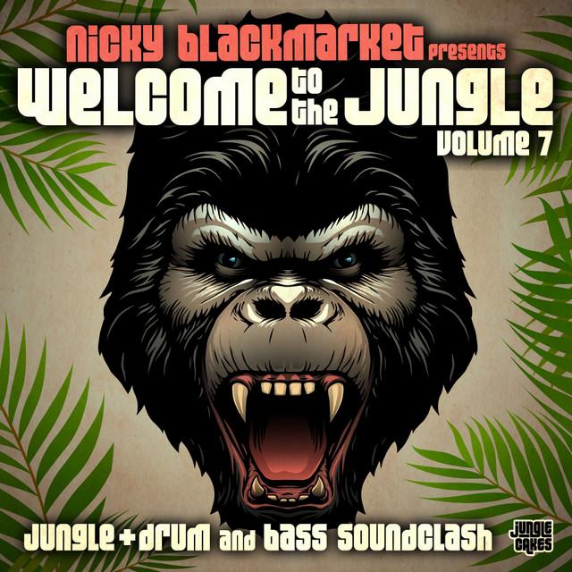 Junglist Sound - Serial Killaz Remix