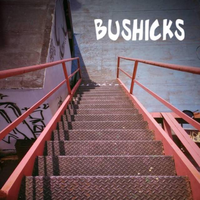 Bushicks
