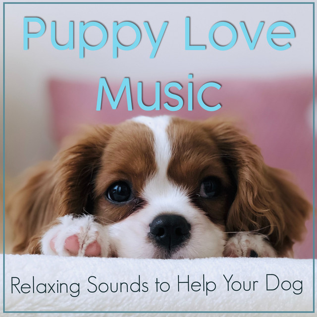 Puppy Love Music: Relaxing Sounds to Help Your Dog
