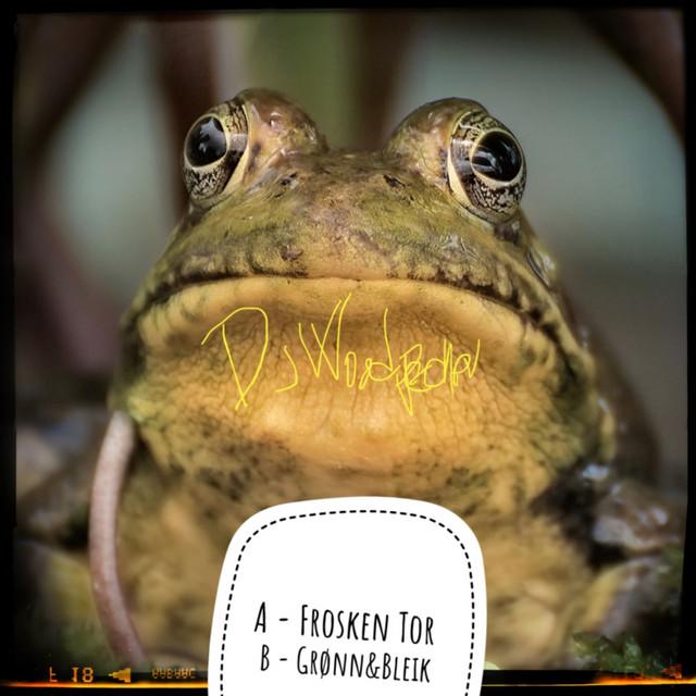 Frosken Tor